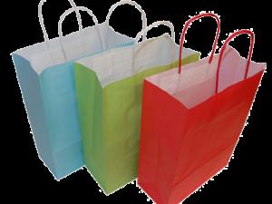 220mm Paper Bags