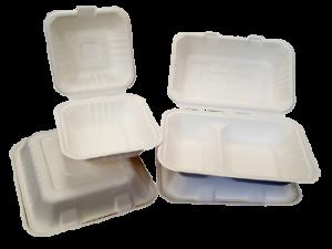 Bio-Degradable Takeaway Boxes